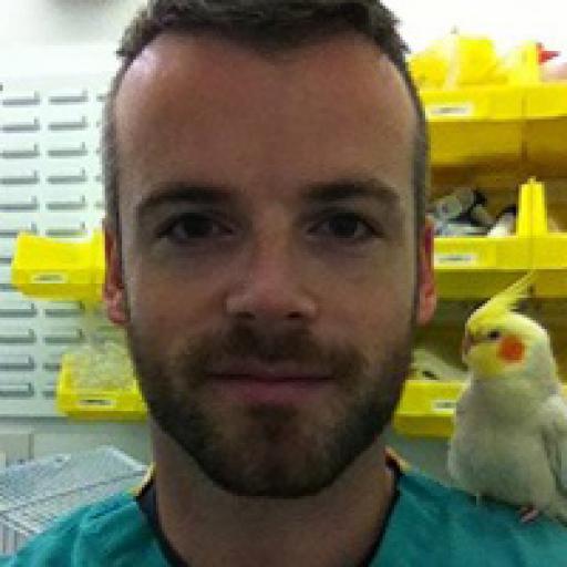 Sean McCormack avatar