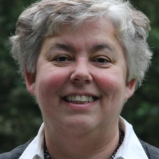 Marianne Sloet van Oldruitenborgh-Oosterbaan avatar