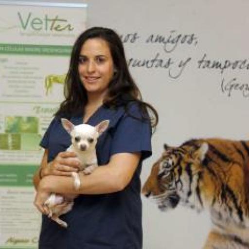 Angela Vela Anero avatar